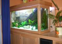 Akvárium borítás